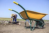 Specialized worker on archaeological excavation. Yellow wheelbarrow.