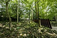 Landscape architecture in the public park Pedra Tosca near the city of Olot in the natural area of La Garrotxa in Catalonia Spain.