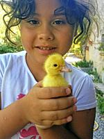 Little girl with duckling.