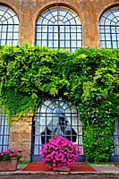 windows and ivy, Paestum, Italy