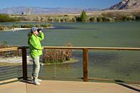 Birder with binoculars, City of Henderson Bird Viewing Preserve, Nevada.