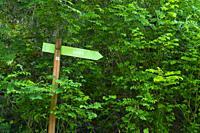 Hiking trail sign, Arbe ravine, Alto Deba - Debagoiena region, Goroeta neighborhood, Aretxabaleta municipality, Gipuzkoa, Basque Country, Spain, Europ...