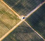 Farmlands. Caspe, Zaragoza province, Aragon, Spain