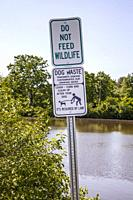 ´Do Not Feed Wildlife´ and ´Clean Up After Your Dog´ signs by the water in a park.