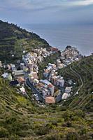 aerial view of Manarola, Cinque Terre, municipality of Riomaggiore, La Spezia province, Liguria, Italy, Europe.