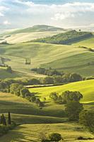 Rolling hills in Orcia valley, Siena province, Tuscany, Italy.