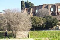 Ruins of Domus Augustana palace on Palatine Hill seen from Circus Maximus, Rome, Lazio, Italy.