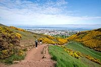 A group of people walk a path up to Arthurs Seat (Holyrood Park) in Scotland.