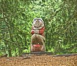 A Trolls in a Trollskogen or a Magic Forest atop Mount Floyen near Bergen, Norway.