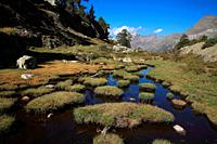 Landscape from El Hospital, La Besurta to Forau d'Aiguallut. Natural park Posets - Maladeta. Huesca. Spain.