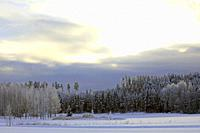 Raasepori, Finland. January 27, 2019. Finland's winter weather gets record-breaking cold: .-38,7 degrees Celsius in Sodankylä, in South of Finland ca ...