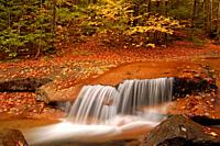 A small waterfall gracefully glides over a rock ledge in autumn.