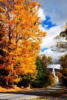 An autumn Lane in Vermont.