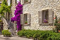 Flowering bougainvillea, stone stairs and entrance to medieval home in St Paul de Vence, Provence, France.