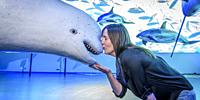 Woman kissing a model at The Whale Museum, Reykjavik, Iceland.