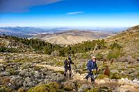Hiking in nature. Biosphere Reserve. Natural Park Sierra de las Nieves. Spanish Fir Abies pinsapo. Ronda, Malaga province. Andalusia, Southern Spain. ...