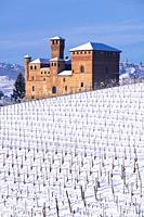 Grinzane Cavour, Piedmont, Italy View on the Castle, Unesco territory, and a snowy vineyard, the sky is blue.