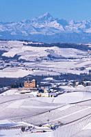 Grinzane Cavour, Piedmont, Italy, Hilly landscape on the vineyards of the Langhe in the Unesco territory of Italy are visible the Castle and the mount...