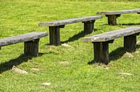 Empty wooden benches on a green meadow.