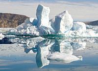 Fjord with icebergs, in the background the Eqip Glacier (Eqip Sermia or Eqi Glacier) in Greenland. Polar Regions, Denmark, August.