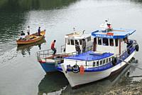 Chile, Lake District, Puerto Montt, Angelmo, fishing boats,.