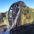 Water Wheel. Murcia. Spain.