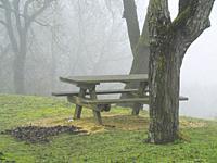 picnic table in fog, Tourtres, Lot-et-Garonne Department, Nouvelle Aquitaine, France.