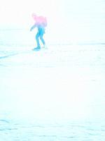 Person long distance skating in mist and sunshine on Lake Malaren, Sweden, Scandinavia