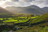 Autumnal view over the Langdale Valley towards Wrynose Fell and Pike of Blisco in the Lake District National Park, Cumbria, England.