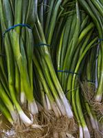 Spring onions tied in bunches on display at a farmer's market in Melbourne, Australia.