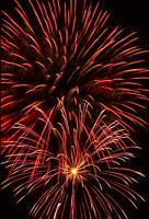 Purple Fireworks.