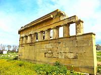 Metaponto, Doric Temple of Hera, Tavole Palatine, Basilicata, Italy.