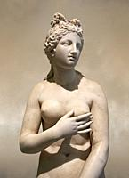 2nd century AD Roman marble sculpture of Aphrodite (Venus), â. . Dresden Capitoline Type, copied from a Hellanistic Greek original, inv 6238, Naples M...