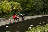 Family with ducks in Queen´s Garden, Nelson, South Island, New Zealand.