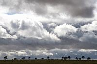 Squally skies in the Wimmera, western Victoria, Australia.