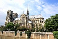 Wide angle view of Notre Dame de paris, France.