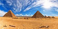 Bedouins near the Pyramids of Giza, sunny day panorama.