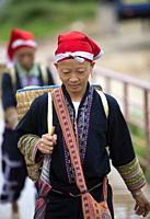 Woman of the Red Dao ethnic minority, Ta Phin Village, Sa Pa, Lao Cai Province, Vietnam, Asia.