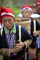 Women of the Red Dao ethnic minority, Ta Phin Village, Sa Pa, Lao Cai Province, Vietnam, Asia.