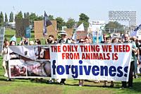 Protestors take part during Animal Rights March on August 24, 2019 in Amsterdam,Netherlands. Animal lovers, activists and supporters stand up and spea...
