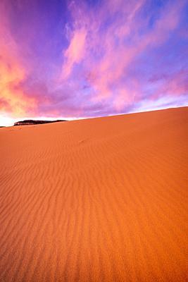 Evening light over dunes, Coral Pink Sand Dunes State Park, Kane County, Utah USA.