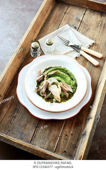 A pork loin with chervil oil and pea puree