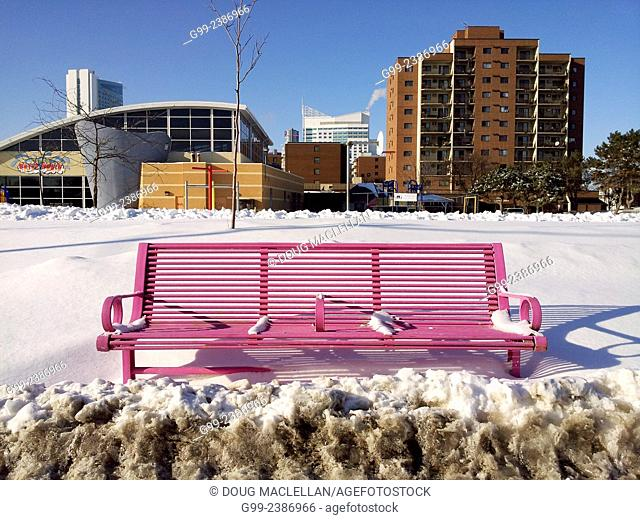 Magenta coloured bench in front of Waterworld, a soon to be shut down aquatic and recreational complex in a poor part of downtown Windsor, Ontario, Canada