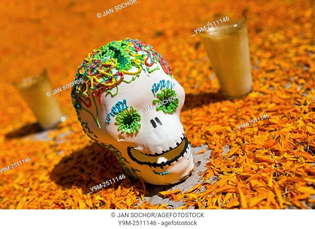 A decorated scull is placed at the altar of the dead (altar de muertos), a religious site honoring the deceased, during the Day of the Dead celebration in...