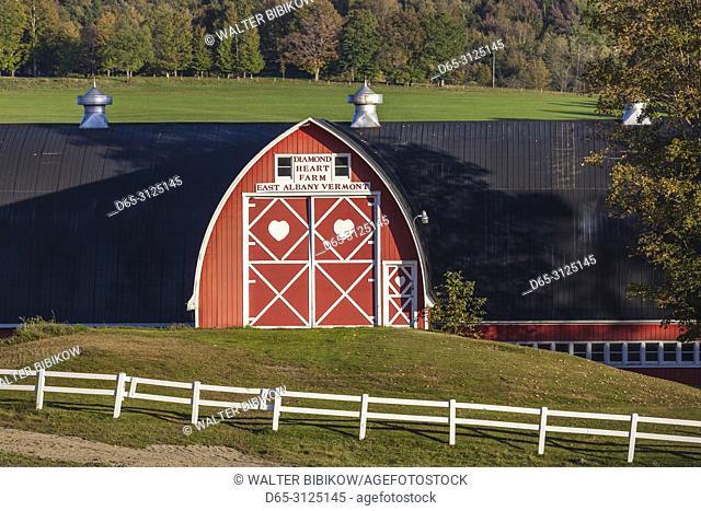 USA, New England, Vermont, Irasburg, Diamond Heart Farm