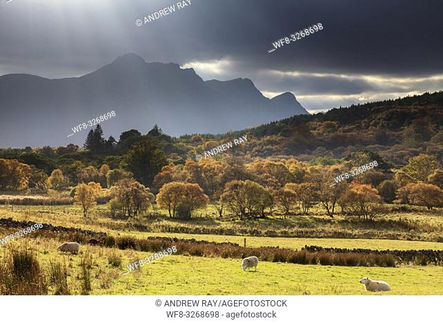 Shafts of light over Ben Loyal, captured in early November from near Tongue in the far north of Scotland