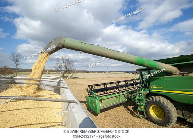Loading soybeans into bins after harvesting in Jarrettsville, Maryland, USA