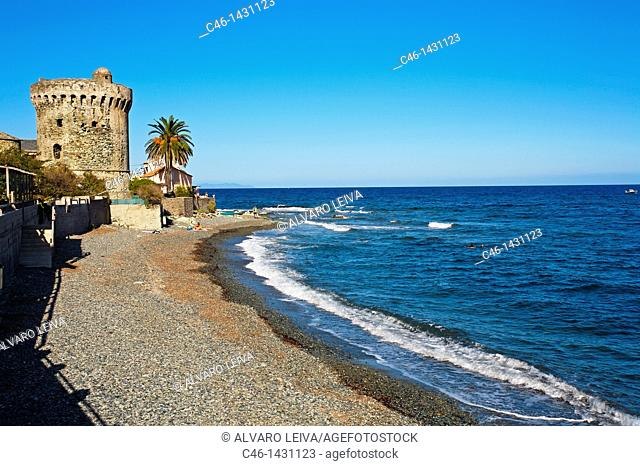 Erbalunga fishing village  Cap Corse, Corsica Island  France