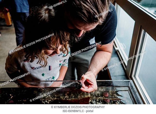 Father and daughter discovering sea life in aquarium