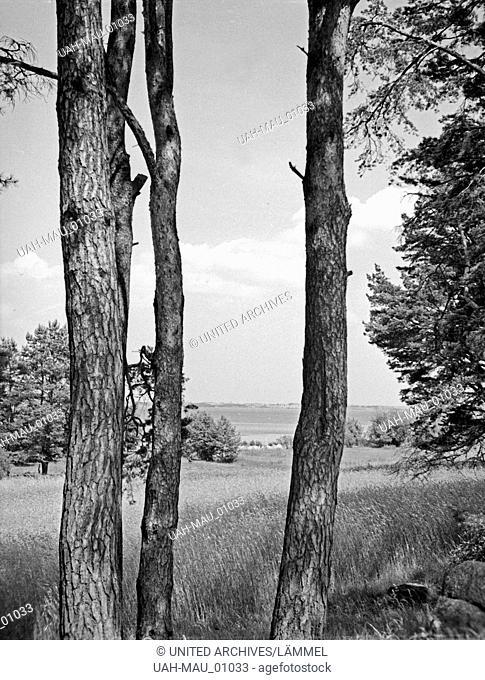Landschaft am Löwentinsee in Masuren, Ostpreußen, 1930er Jahre. Landscape at Löwentinsee lake in Masuria, East Prussia, 1930s
